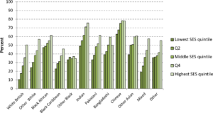 Graph showing HE participation by ethnic and socio-economic group for males only